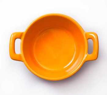 BrightFish Bowl